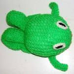Zelená žabka se žlutým bříškem
